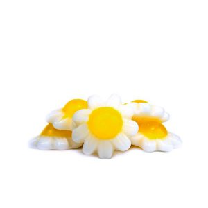 Burmar margaritas blancas